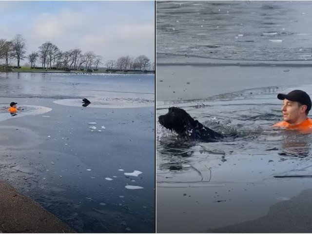 Rex Jarvis saves the dog from the lake in Pontefract Park (photo and video: Paula Town).