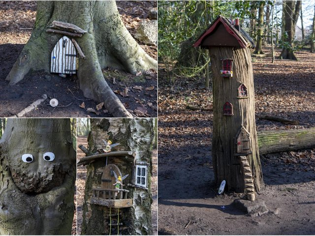 The fairy forest in Ram Wood, Roundhay Park (photo: Tony Johnson).