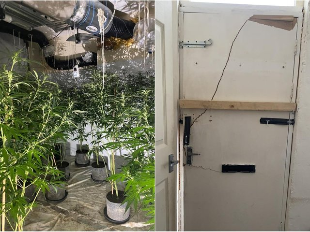 A cannabis farm with 150 plants was found inside the property in Beeston (Photo: WYP)