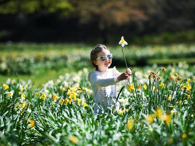 Four-year-old Lucy Marjorbanks enjoys the warm weather on a visit to Temple Newsam. Picture: Jonathan Gawthorpe