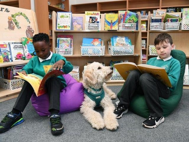 Dougie loves being read to by children at Primley Wood primary school.