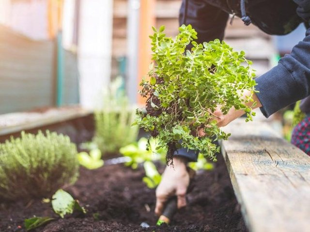 New research shows that people who rent a home in Leeds are paying more than almost any other UK city to have a garden in their home.