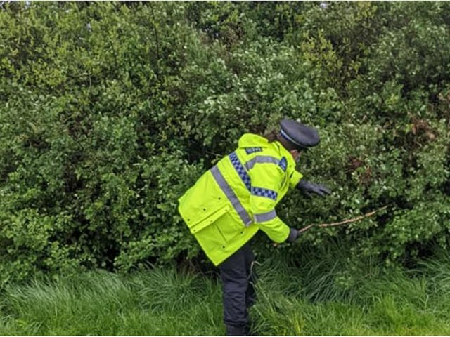 """Officers searched Hesketh Park in Tingley as part of Operation Sceptre - which brings a """"nationwide focus to knife crime"""""""