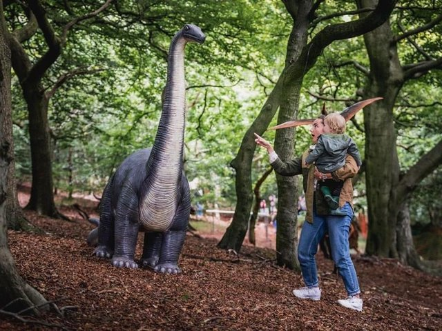 Totally Roarsome is open this week at Hazlewood Castle in Leeds (photo: Totally Roarsome)