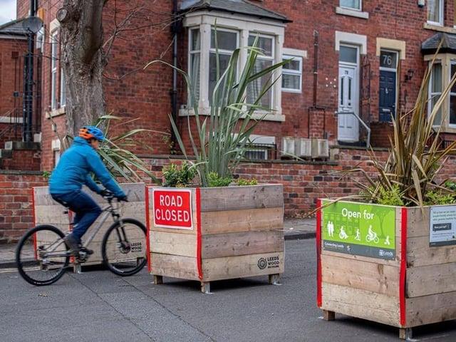 Planter boxes in Chapel Lane, Hyde Park.