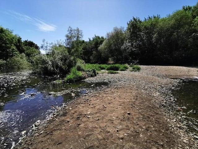 Kirkstall Valley Nature Reserve.
