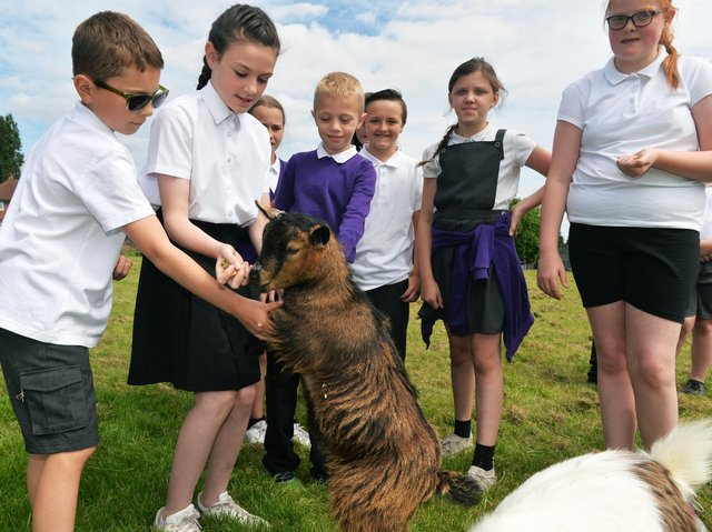Pupils at Clapgate Primary School,with the school goats Pablo and Pedro.