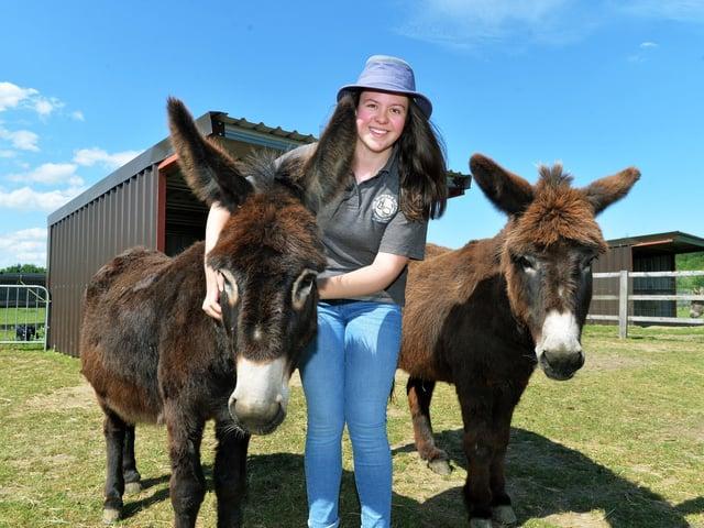 Jenny Howarth at  the Wonky Donkey sanctuary at Cridling Stubbs near Knottingley.  Photo: Jonathan Gawthorpe