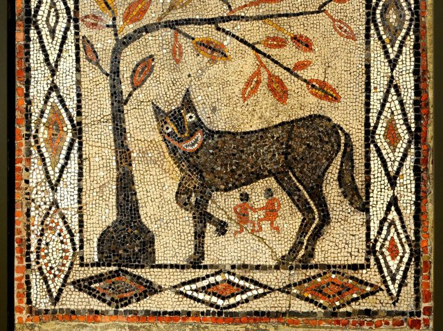 The eye-catching wolf mosaic is believed to date from around 300-400 AD.